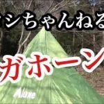 ヒロシキャンプ 2015 滝沢園