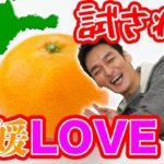 つよぽんが挑む!愛媛県王選手権!!