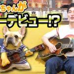 どういうこと!?!?クルミちゃん、まさかのギターデビューwww