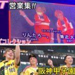 TGC、阪神タイガースイベントウル虎の夏でも爆アゲ!?甲子園球場と富山にお邪魔しました‼︎