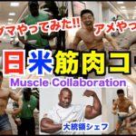 【筋肉交流】日米筋肉対決が実現。腕周り65cmの大統領シェフとの対決で、とんでもない事態に、、、衝撃のラストは必見です。