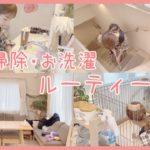 【密着】平日日中のお掃除・洗濯ルーティーン