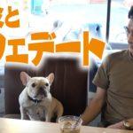 【クルミ感謝デー!】クルミとおしゃれなカフェでデート!ワンちゃんと行けるインスタ映えするカフェ!