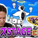 【にゃんこ大戦争】EIKO、極ムズ STAGEに挑戦!!【#4】