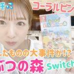 【どうぶつの森①】Switch初心者辻ちゃんが開封~ゲーム初期設定までやってみた