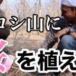 ヒロシ山に桜の木を植える