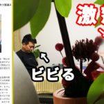 【修羅場】嫁迫に「串カツ田中へ2000万円を払う」報告をした結果…【前日談】