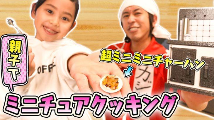 【ミニチュア料理】親子で超ミニミニチャーハン作ってみた