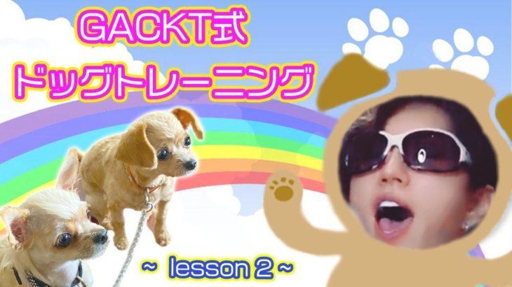 GACKT式 ドッグトレーニング lesson2