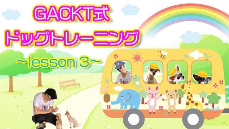 GACKT式 ドッグトレーニング lesson3