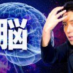 【脳①】記憶や感情は脳の中でどうやって作られるのか?