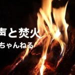 蛙の声と焚火