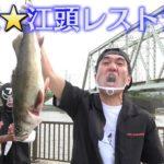 【満天☆江頭レストラン】旬で獲れたての高級魚をさばいて寿司にして、地元の人たちと一緒に青空パーティーしてみた。