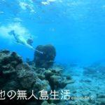 【チャラ男の無人島生活②】手越vs魚と蜘蛛、最高の景色を求めて