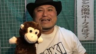 ハリウッドザコシショウと猿? #10