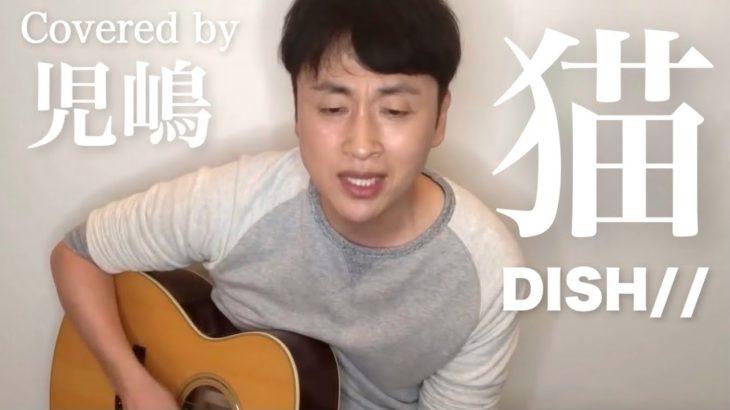 DISH//の猫を弾き語る児嶋と見守る児嶋【歌ってみた】