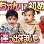 【赤ちゃんコラボ】はるちゃんにお友達が出来ました