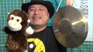 ハリウッドザコシショウと猿? #12