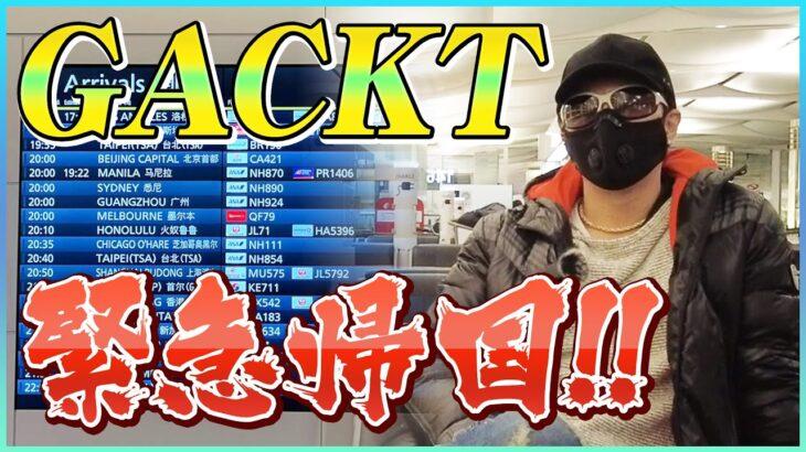 GACKT緊急帰国!!