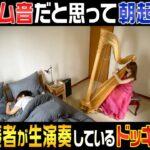 【ドッキリ】アラーム音だと思って朝起きたら、いるはずのないハープ奏者が生演奏しているドッキリ