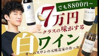 【7万かと思った】DaiGoがビビった高級ワインの香りがする【お手頃ワイン】