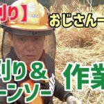【草刈り】久々草刈り&チェーンソー作業!楽しいわ!