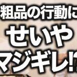 【衝撃編】粗品の家で明太子たこ焼き振る舞うはずが… 粗品の行動にせいやマジギレ!?【霜降り明星】