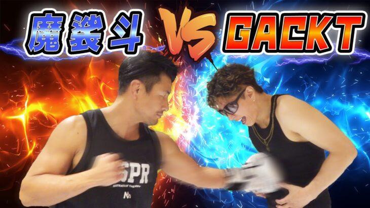 魔裟斗 vs GACKT 魔裟斗のパンチはGACKTを倒せるのか!?