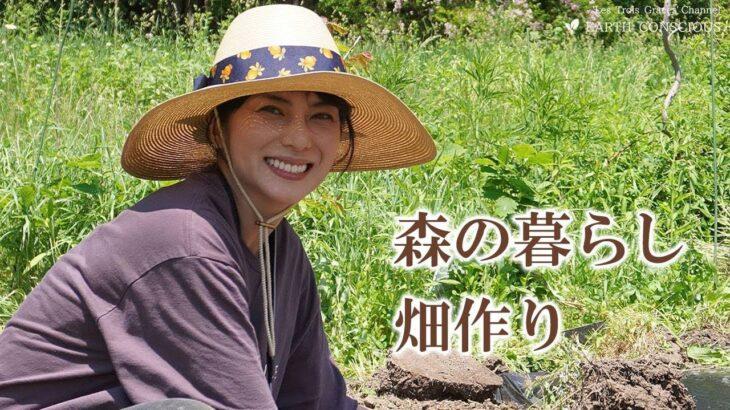 【森の暮らし】菌ちゃん先生伝授!素晴らしくエコロジカルなビーガニック畑づくり!!