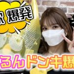 【ドンキ爆買い】コスメ!韓国グルメ!ポケモン!物欲が爆発しました。