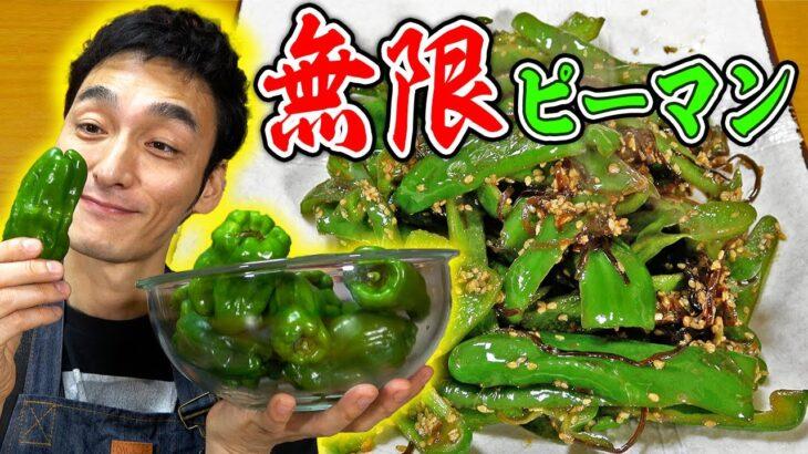 【料理】簡単レシピで超うまい!!これがホンマの無限ピーマンや!