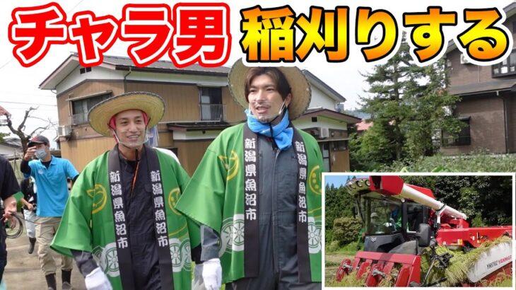 【EXIT】チャラ男が稲刈りに挑戦!コンバイン暴走で田んぼを破壊⁉︎