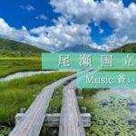 「尾瀬国立公園」-Sharing Trip #8-ハイキング編
